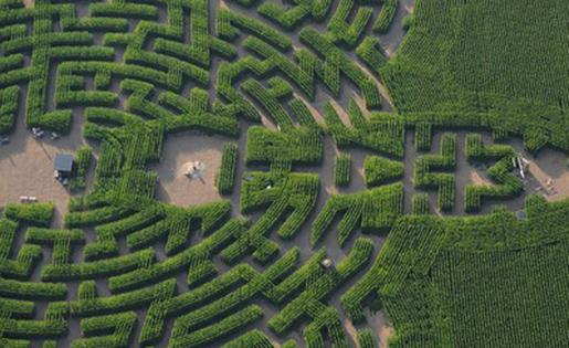labyrinth7